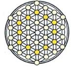 Иерархичность и инвариантность построения узора Цветка Жизни